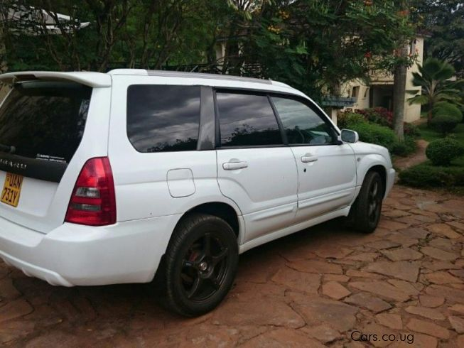 used subaru forester 2002 forester for sale kampala subaru forester sales subaru forester. Black Bedroom Furniture Sets. Home Design Ideas