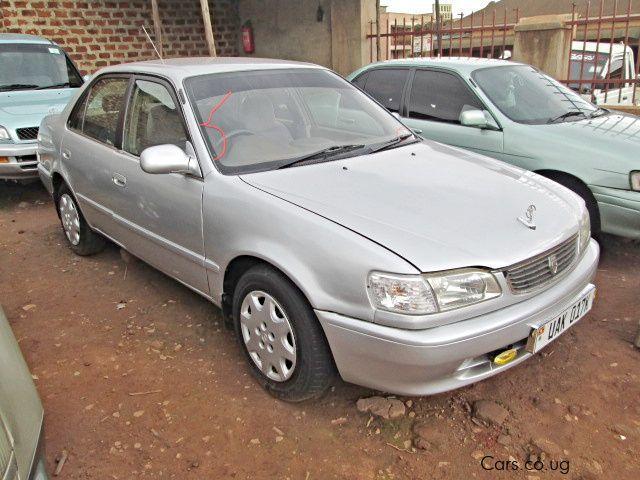 Used Toyota Corolla 1991 Corolla For Sale Kampala Toyota Corolla Sales Toyota Corolla Price Ush 9m Used Cars