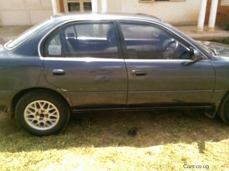 Used Toyota Corolla 1994 Corolla For Sale Kampala