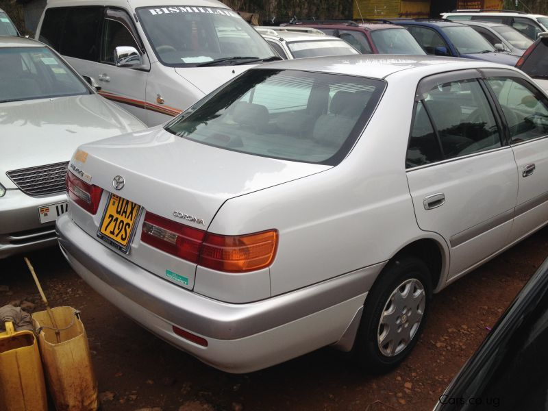 Buying Cars In Kampala