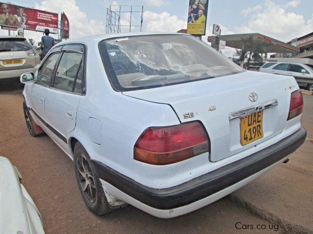 Used Toyota Corolla (110)   1998 Corolla (110) for sale