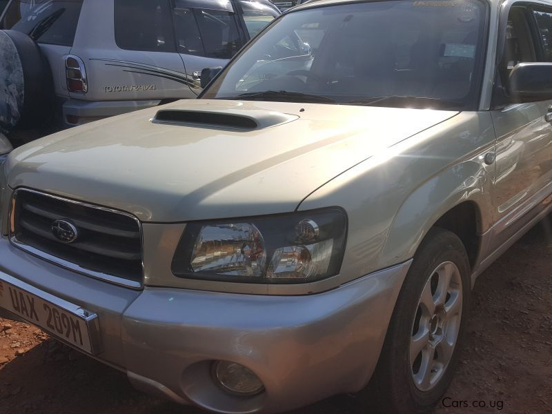 Used Subaru forester | 2004 forester for sale | Kampala