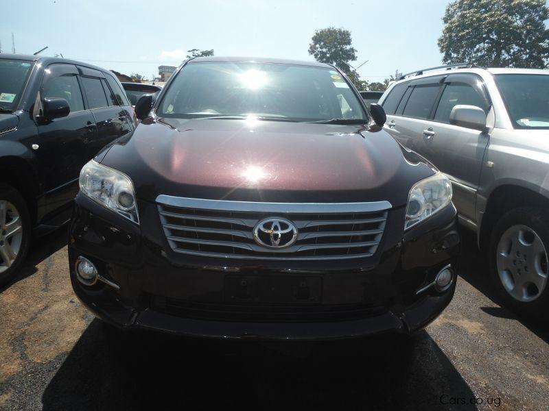 Used Toyota Vanguard | 2013 Vanguard for sale | Kampala Toyota ...