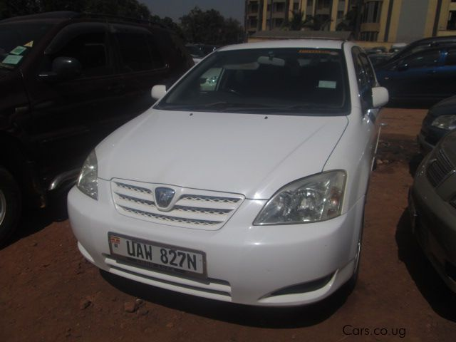Pre-owned Toyota Allex for sale in