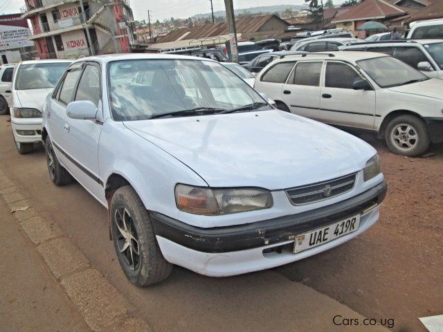 Pre-owned Toyota Corolla (110) for sale in