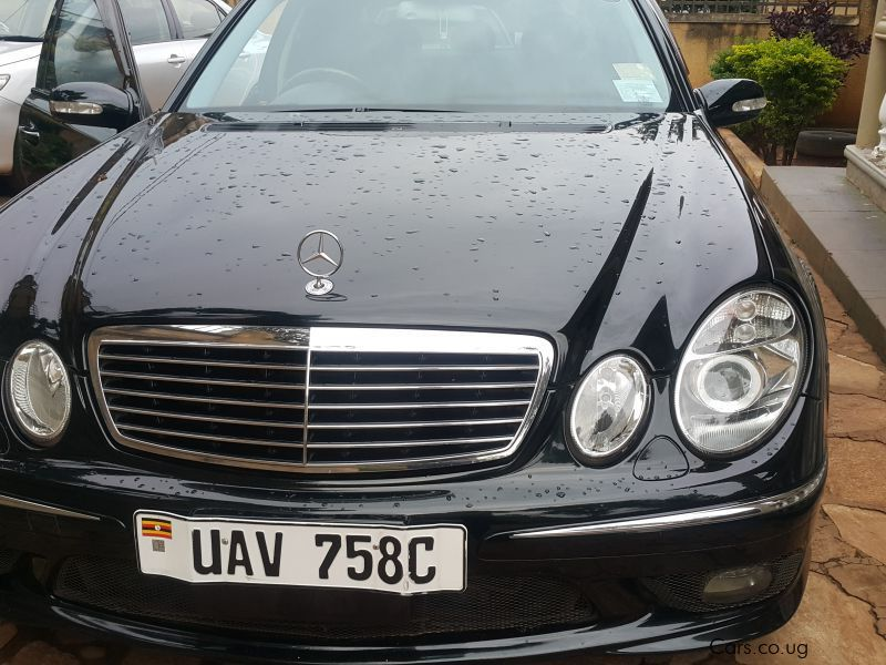 Pre-owned Mercedes-Benz E55 for sale in