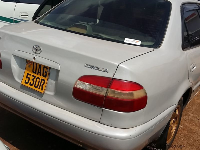 Pre-owned Toyota COROLLA 110 for sale in Kampala