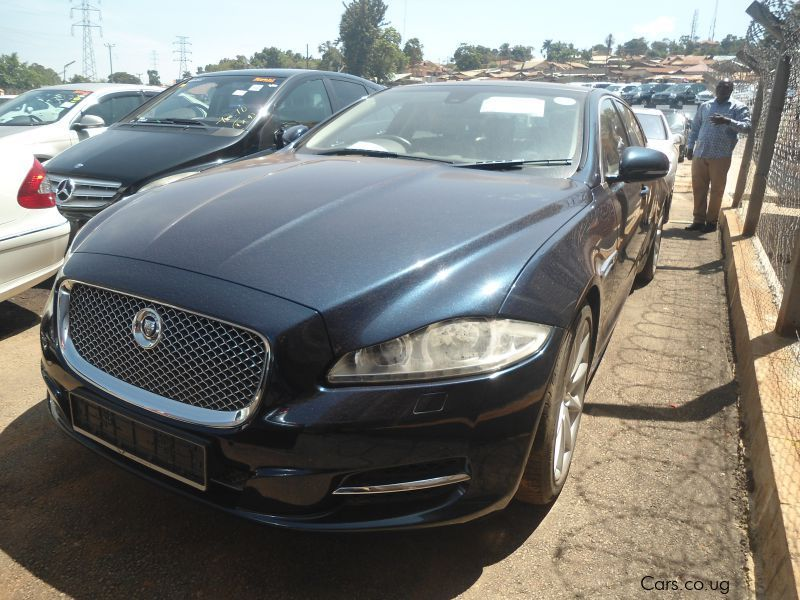Pre-owned Jaguar xls for sale in Kampala