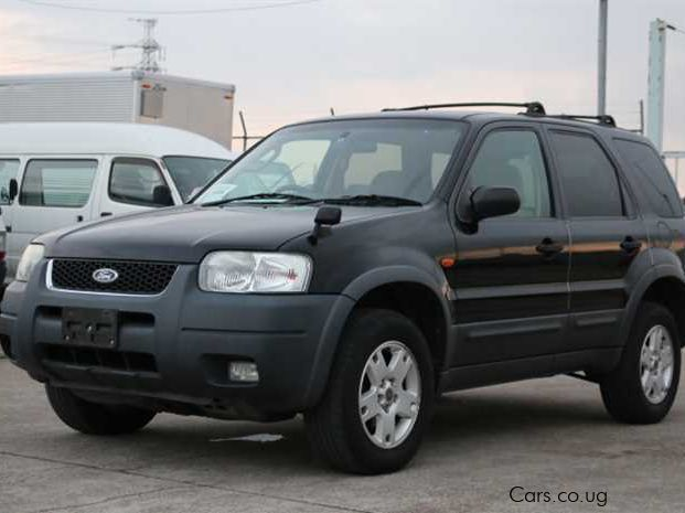 Pre-owned Ford Escape XLT for sale in