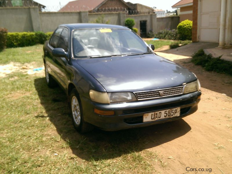 Pre-owned Toyota Corolla for sale in