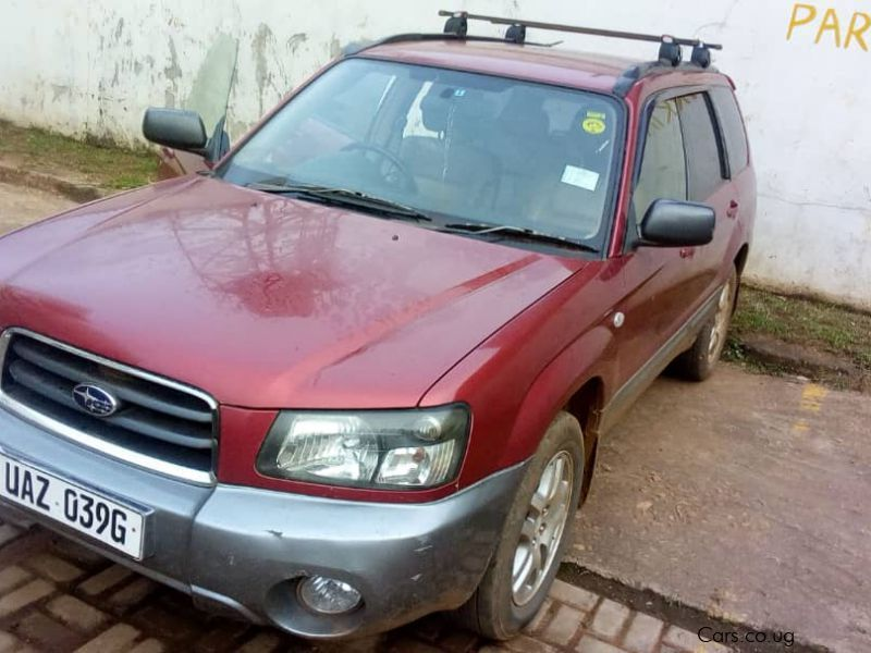 Pre-owned Subaru Forester SG5 for sale in