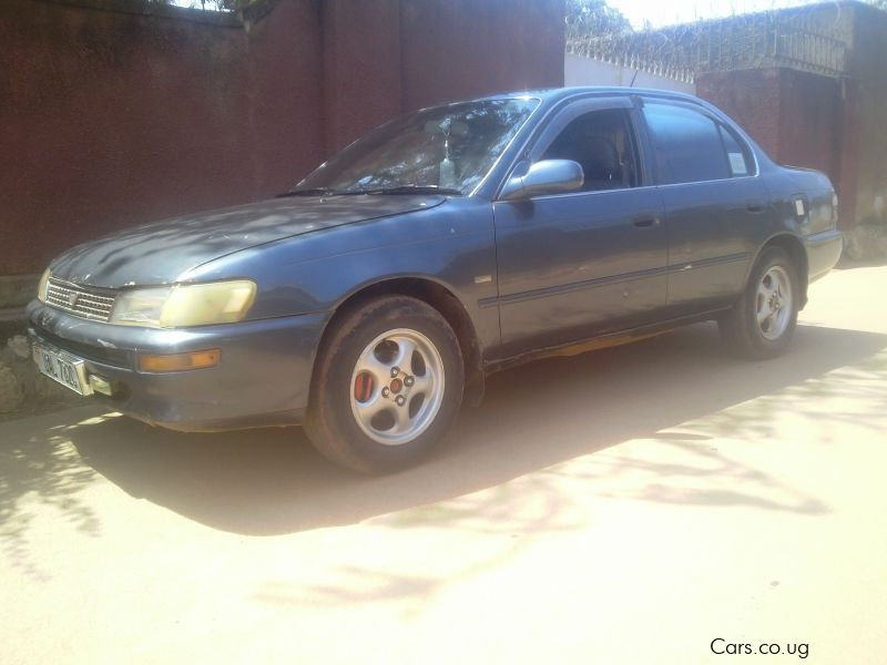Pre-owned Toyota Corona A100 kikumi for sale in